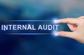 Audit Internal dalam Perguruan Tinggi : Ruang Lingkup, Tujuan, Fungsi